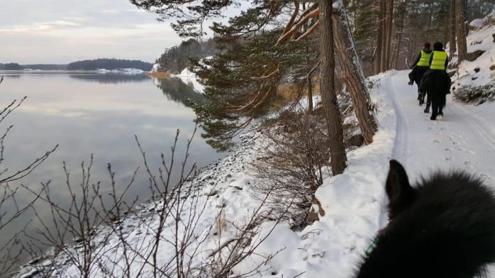kansikuva talvi