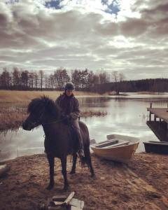 gnipa wilhelmsberg ranta parainen islanninhevonen